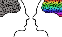 Business Owner Brain
